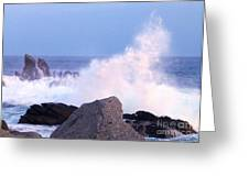 Drama Of The Rocky Shore Greeting Card