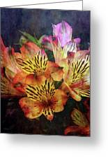 Dramatic 1536 Idp_2 Greeting Card
