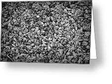 Dramatic Black And White Petals On Stones Greeting Card