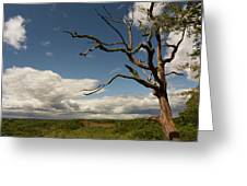 Dramatic Overlook Greeting Card