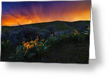 Dramatic Spring Sunset In Boise Idaho Usa Greeting Card