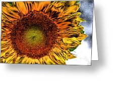 Dramatic Sunflower Greeting Card