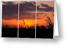 Dramatic Sunset Triptych Greeting Card
