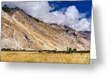 Drass Village Agriculture Kargil Ladakh Jammu And Kashmir India Greeting Card