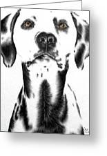 Drawing Of A Dalmatian Dog Greeting Card