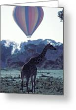 Dream Adventure In Kenya Greeting Card