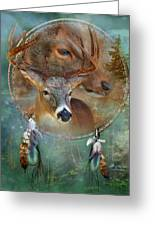 Dream Catcher - Spirit Of The Deer Greeting Card