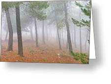 Dream Forest II. Living In A Dream... Greeting Card