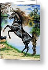 Dream Horse Series 3015 Greeting Card