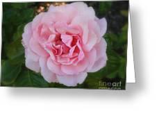 Dream Rose Greeting Card