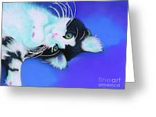 Dreamer Greeting Card by Tracy L Teeter