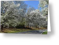 Dreamin' Of A White Spring No.5 Greeting Card