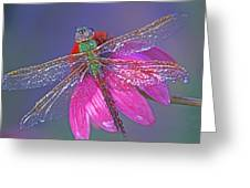 Dreaming Dragon Greeting Card