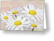Dreaming Of Daisies Greeting Card