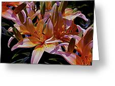 Dreaming Of Lilies 5 Greeting Card