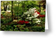 Dreaming Of Spring Greeting Card by Sandy Keeton
