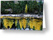 Dreams Of A Young Tamarack Greeting Card