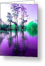 Dreamy Bayou Sorrel Greeting Card