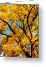 Dreamy Crisp Autumn Day Greeting Card