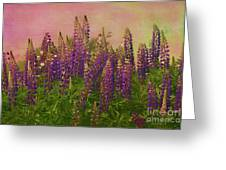 Dreamy Lupin Greeting Card