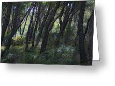 Dreamy Marjan Forest In Croatia Greeting Card