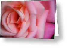Dreamy Pink Rose Greeting Card
