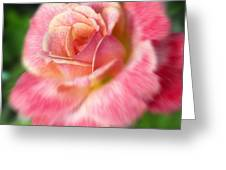 Dreamy Rose Greeting Card