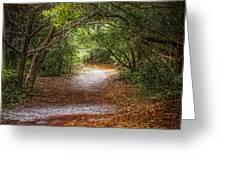 Dreamy Walk Greeting Card