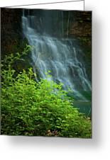 Dreamy Waterfalls Greeting Card by Iris Greenwell
