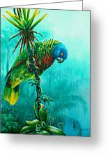 Drenched - St. Lucia Parrot Greeting Card