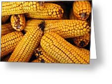 Dried Corn Cobs Greeting Card