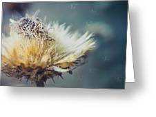 Dried Thistle Greeting Card