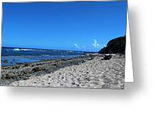 Drifting On The Beach In Dominican Republic  Greeting Card