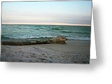 Driftwood 2 Greeting Card
