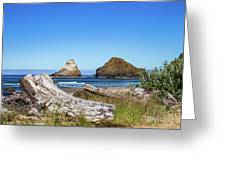 Driftwood And Rocks Greeting Card