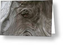 Driftwood Break Greeting Card