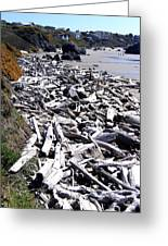 Driftwood By The Ton Greeting Card