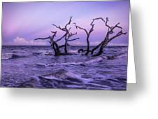 Driftwood In The Waves Greeting Card