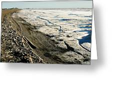 Driftwood On The Frozen Arctic Coast Greeting Card