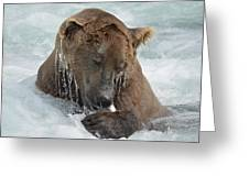 Dripping Grizzly Bear Greeting Card
