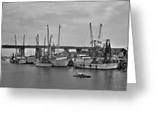 Drive By Tybee Island Shrimp Boat Art Greeting Card