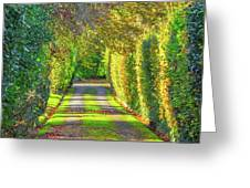 Drive Into Autumn Greeting Card