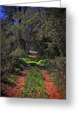 Driveway To Home Greeting Card