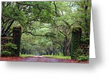 Driveway To The Past Greeting Card