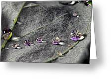 Droplet Stack Greeting Card