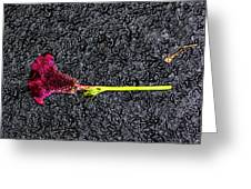 Dropped Flower Greeting Card