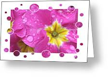 Bubbly Pink Raindrops  Greeting Card