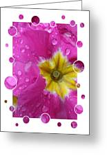 Drops Upon Raindrops 5 Greeting Card