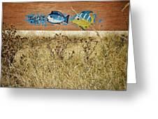 Dry Aquarium Greeting Card