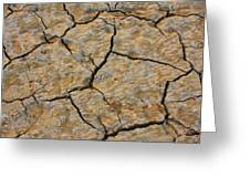Dry Cracked Lake Bed Greeting Card